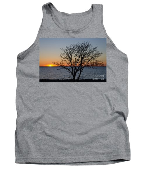Bare Tree At Sunset Tank Top