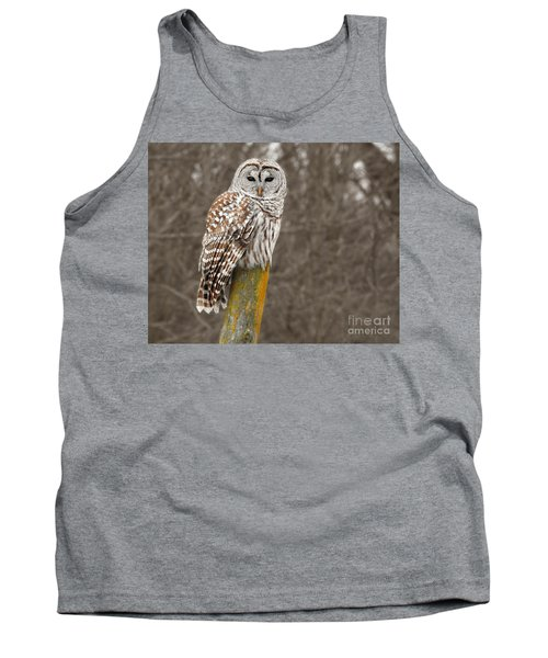Barred Owl Tank Top by Kathy M Krause