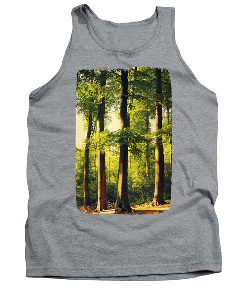 Beech Tree Forest In Evening Light Tank Top