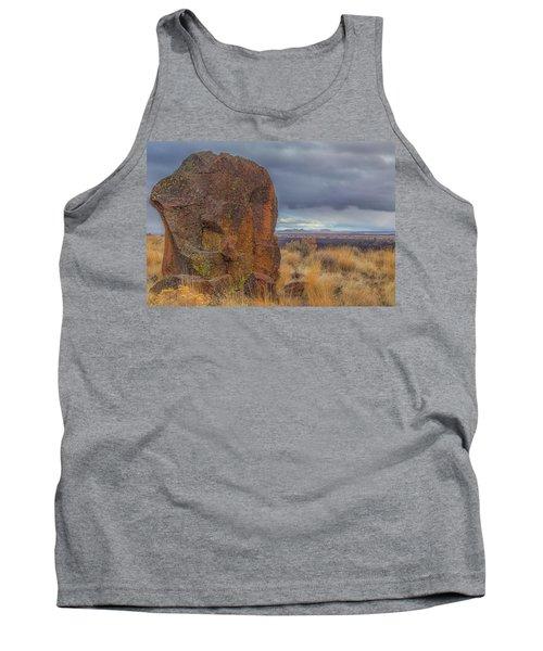 Big Rock At Lava Beds Tank Top
