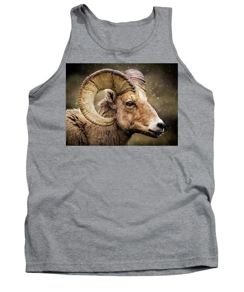 Bighorn Sheep In Winter Tank Top