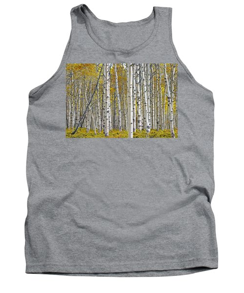 Birch Tree Grove With A Touch Of Yellow Color Tank Top