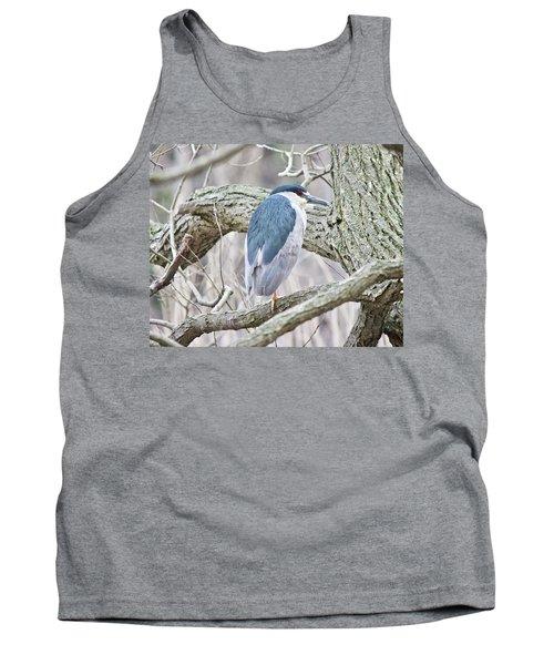 Black-crowned Night-heron  Tank Top