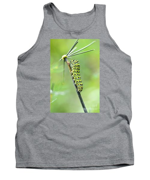 Black Swallowtail Caterpillar Tank Top by Debbie Green