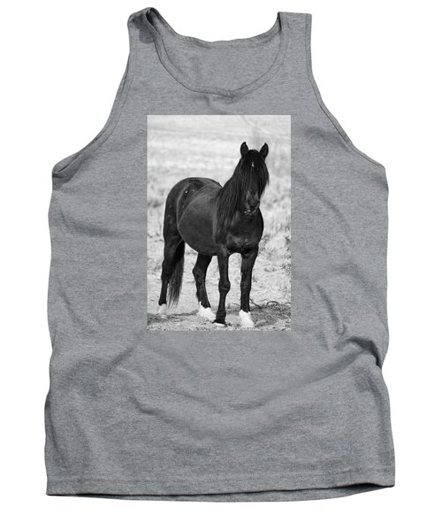 Black Wild Mustang Stallion Tank Top