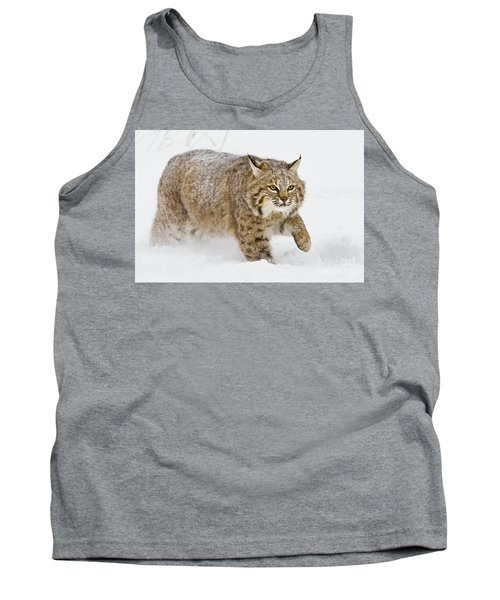Bobcat In Snow Tank Top