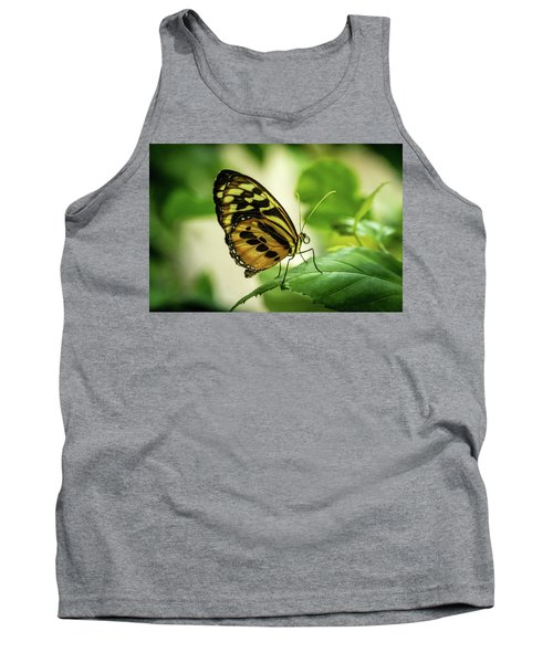 Brown And Black Tropical Butterfly Resting Tank Top