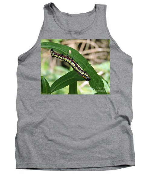 Brown Hooded Owlet Moth Larva  Tank Top