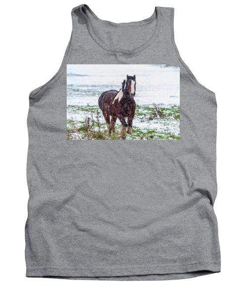 Brown Horse Galloping Through The Snow Tank Top