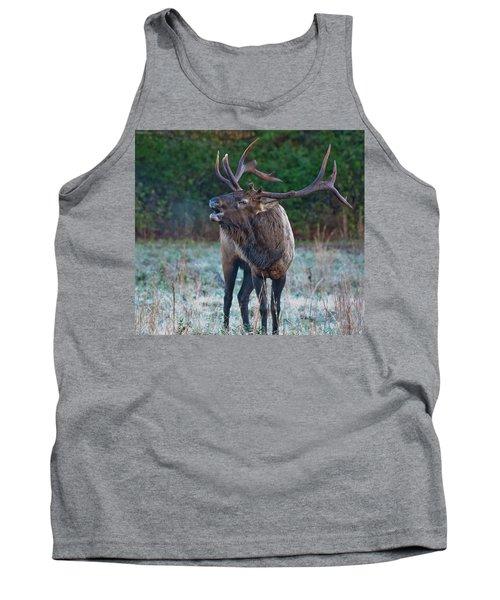 Bugling Elk Tank Top