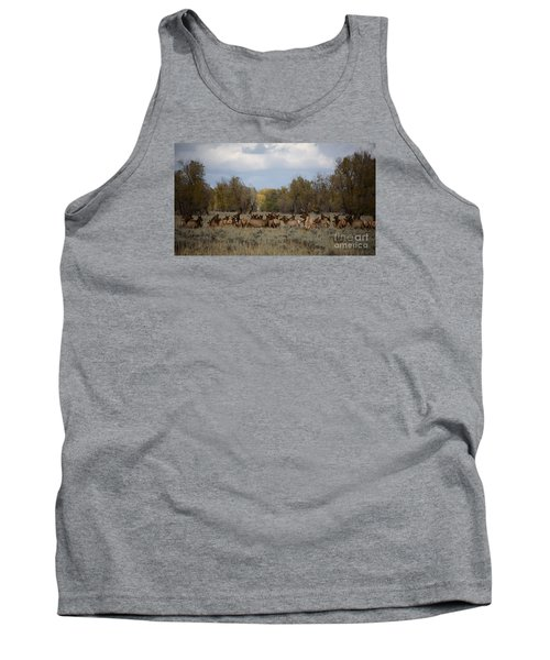 Tank Top featuring the photograph Bull Elk And Harem by Sandy Molinaro