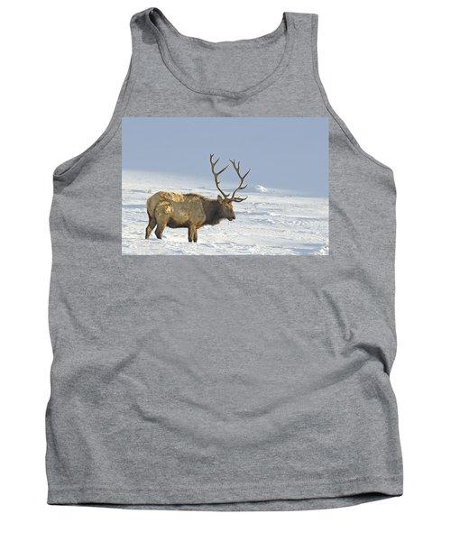 Bull Elk In Snow Tank Top
