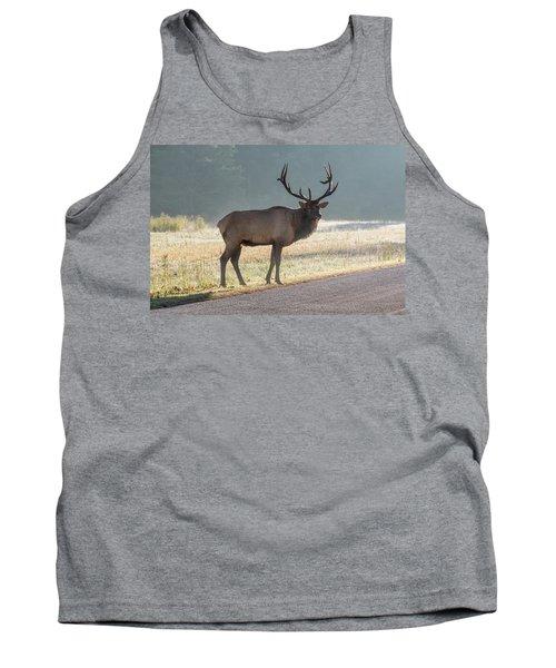 Bull Elk Watching Tank Top