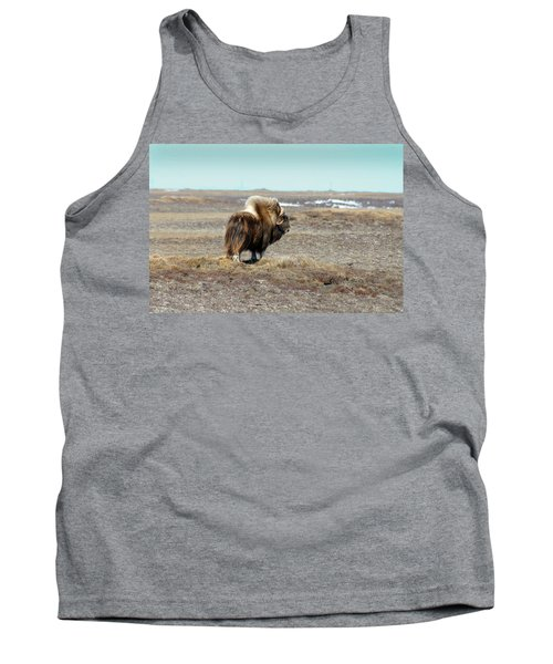 Bull Musk Ox Tank Top by Anthony Jones