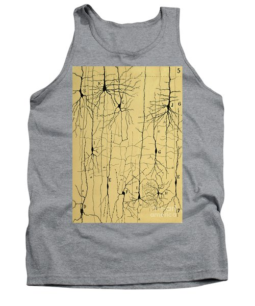 Cajal Drawing Of Microscopic Structure Of The Brain 1904 Tank Top