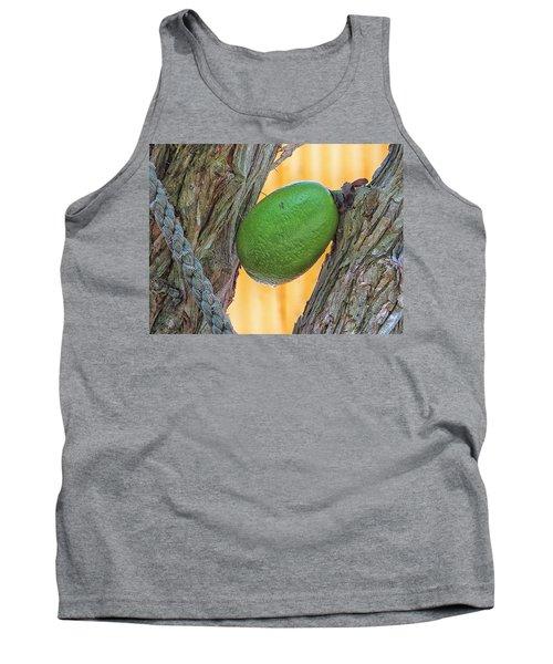 Calabash Fruit Tank Top