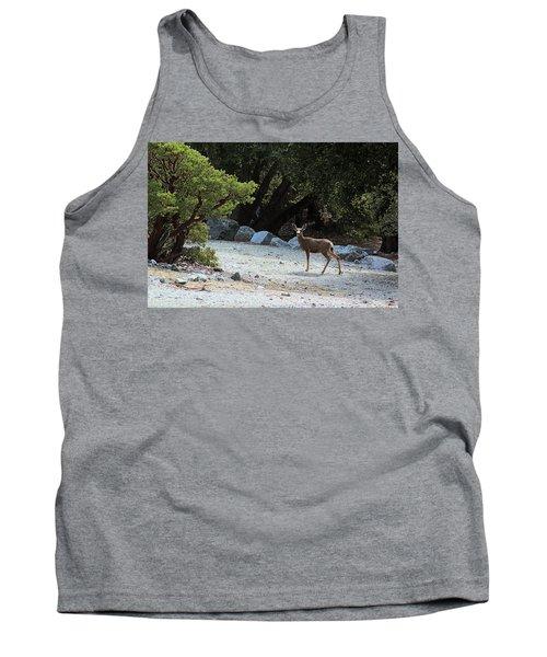 California Mule Deer Tank Top