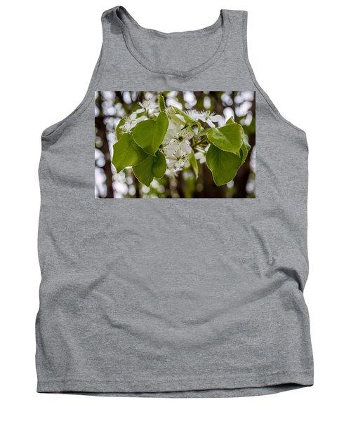 Callery Pear Tree Bloom Tank Top