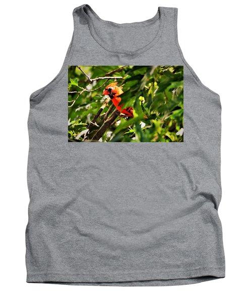 Cardinal In Tree Tank Top