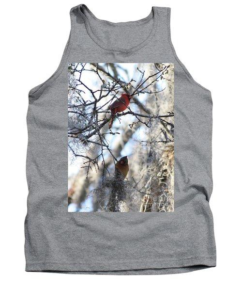 Cardinals In Mossy Tree Tank Top by Carol Groenen