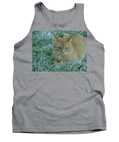 Cat In Frosty Grass Tank Top