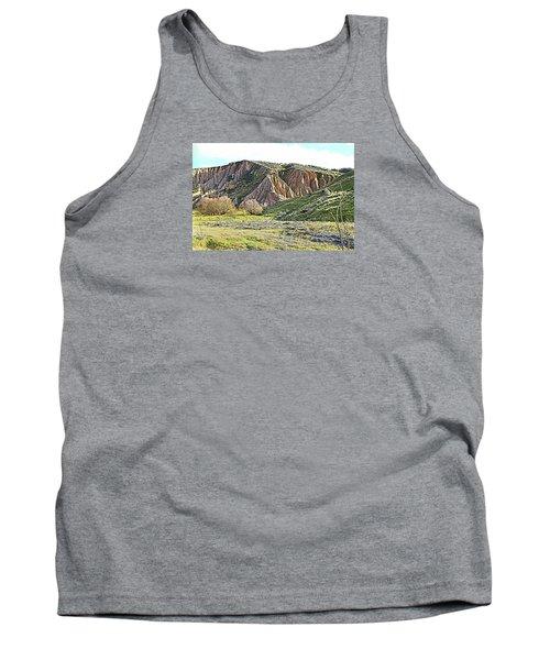 Clay Cliffs Near Danseys Pass Tank Top
