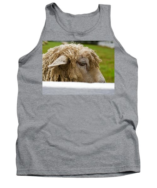 Close-up Of Leicester Longwool Tank Top
