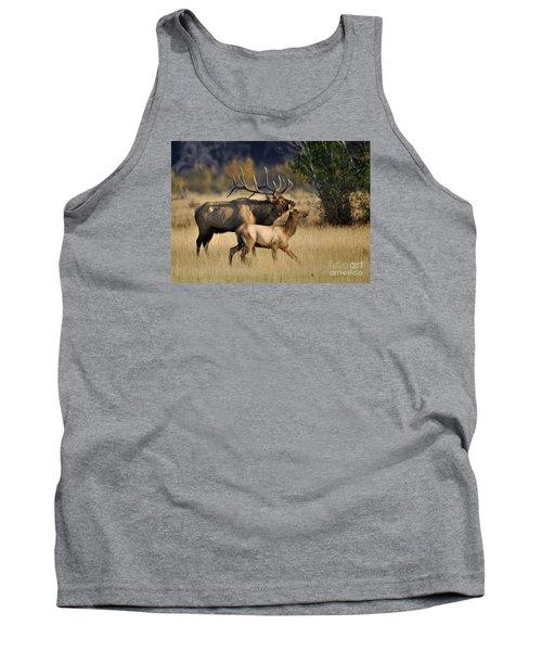 Colorado Elk  Tank Top by Nava Thompson