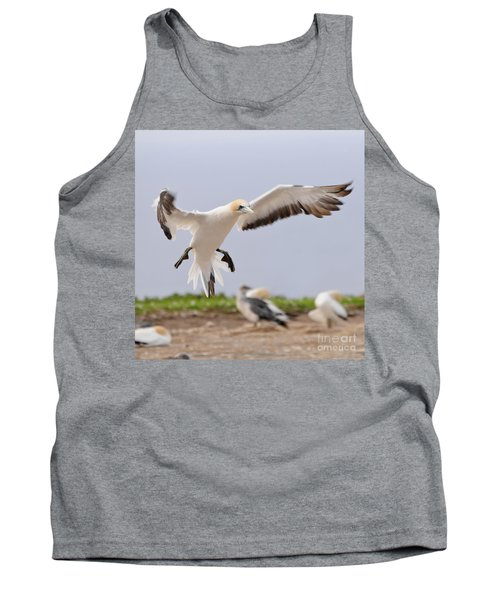 Coming In To Land Tank Top by Werner Padarin