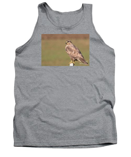 Tank Top featuring the photograph Common Buzzard Along The Highway Nis Budapest by Jivko Nakev