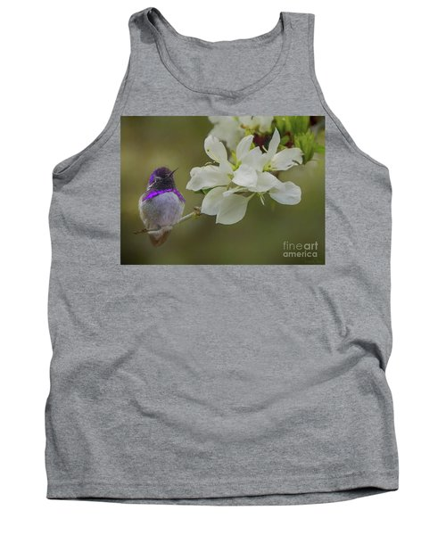 Costas Hummingbird On An Anacacho Orchid Branch Tank Top