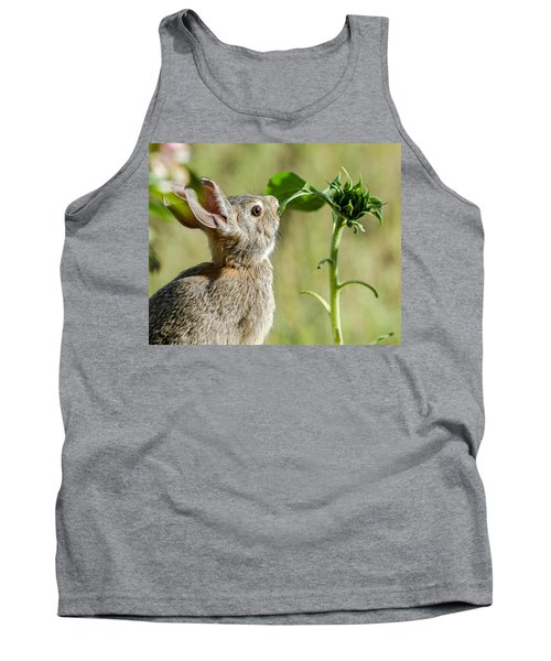 Cottontail Rabbit Eating A Sunflower Leaf Tank Top