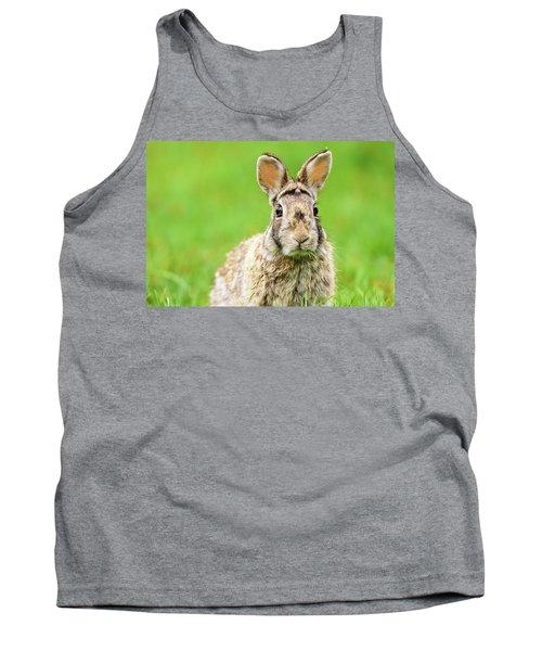 Cottontail Rabbit Tank Top