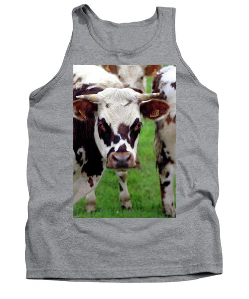 Cow Closeup Tank Top