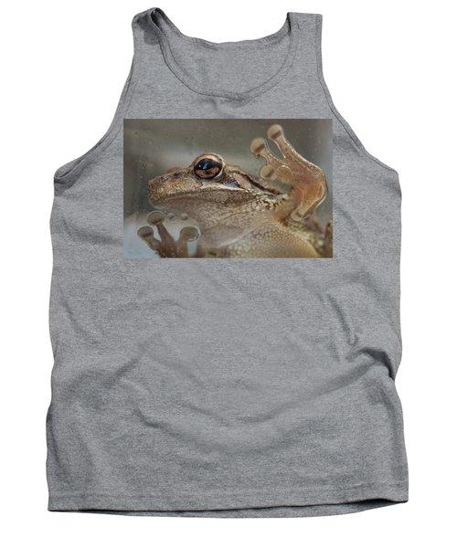 Cuban Treefrog Tank Top