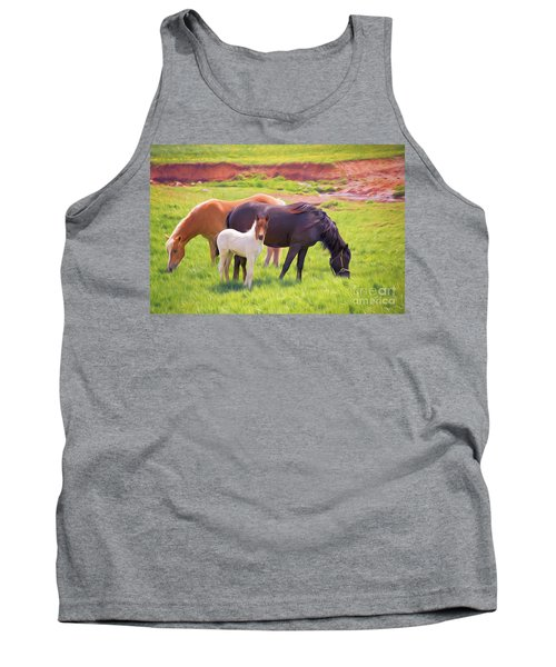 Curious Colt And Mares Tank Top