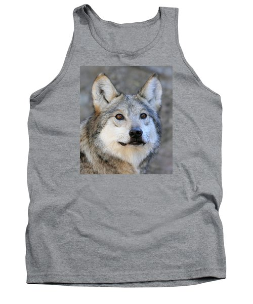 Curious Wolf Tank Top by Elaine Malott
