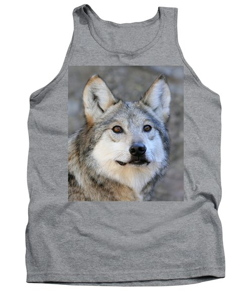Curious Wolf Tank Top