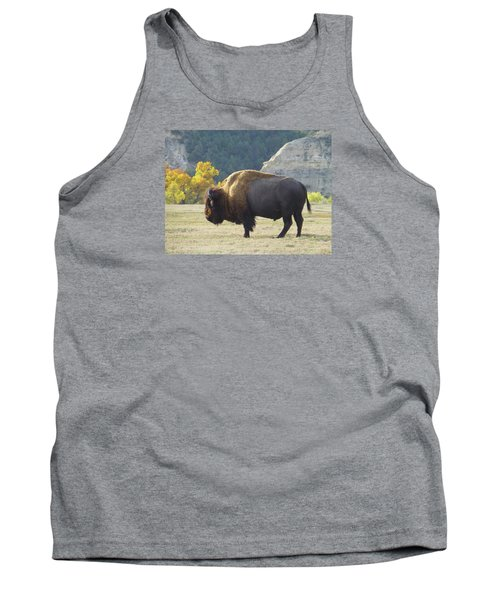 Dakota Badlands Majesty Tank Top