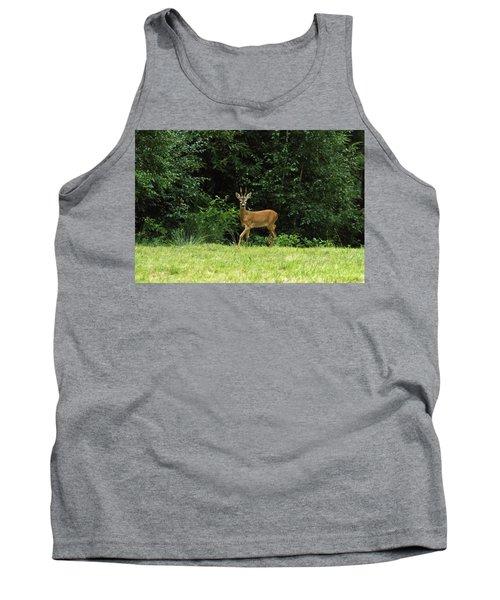 Deer In The Woods Tank Top