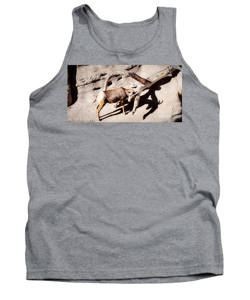 Tank Top featuring the photograph Desert Bighorn Ram by Lawrence Burry