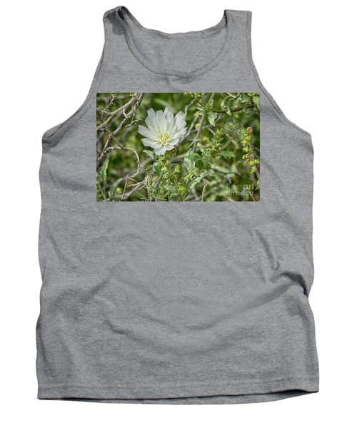 Tank Top featuring the photograph Desert Chicory   Rafinesquia Neomexicana by Anne Rodkin