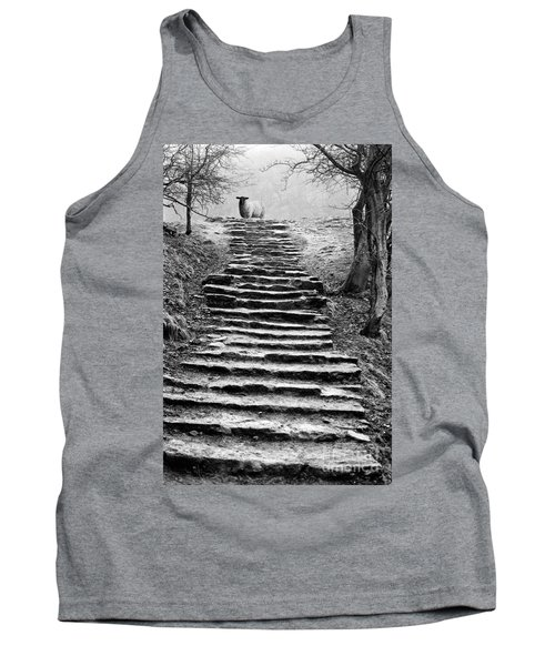 Dovedale Steps Tank Top