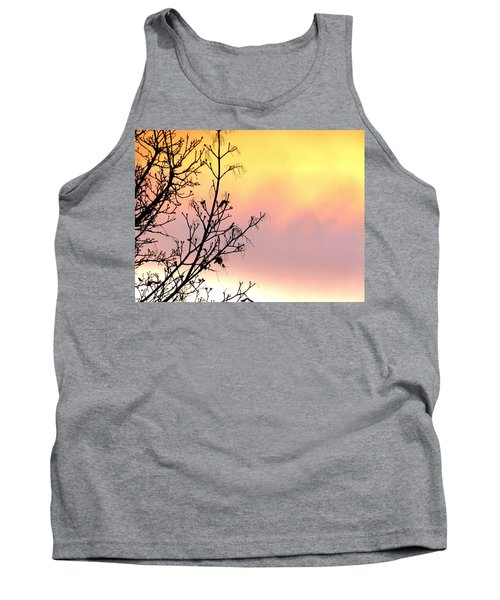 Tank Top featuring the photograph Early Spring Sunset by Will Borden