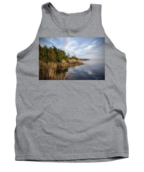 East Bank Looking South At Sunset Tank Top by Phil Mancuso