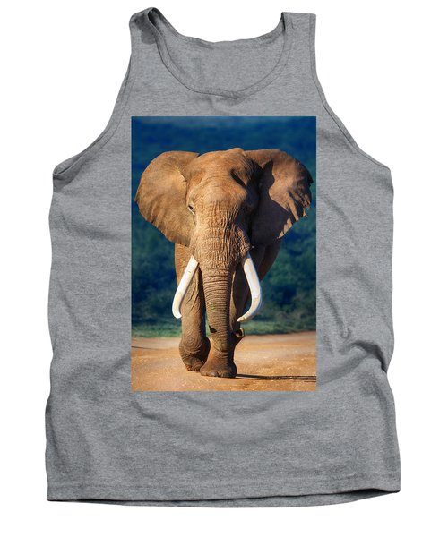 Elephant Approaching Tank Top