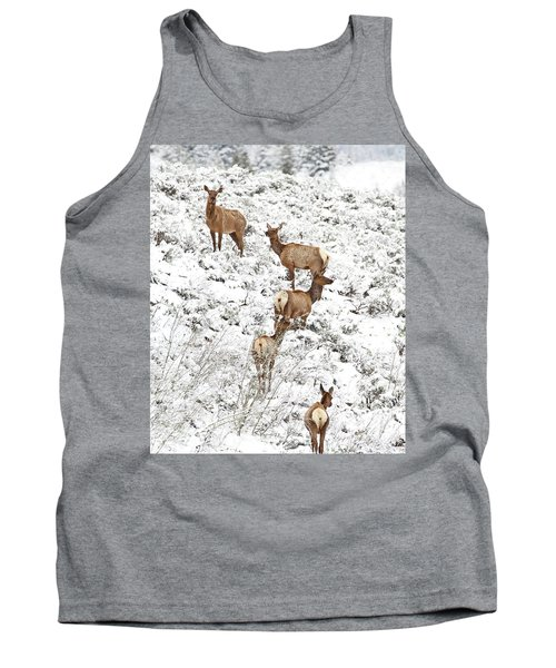 Elk Cows In Snow Tank Top