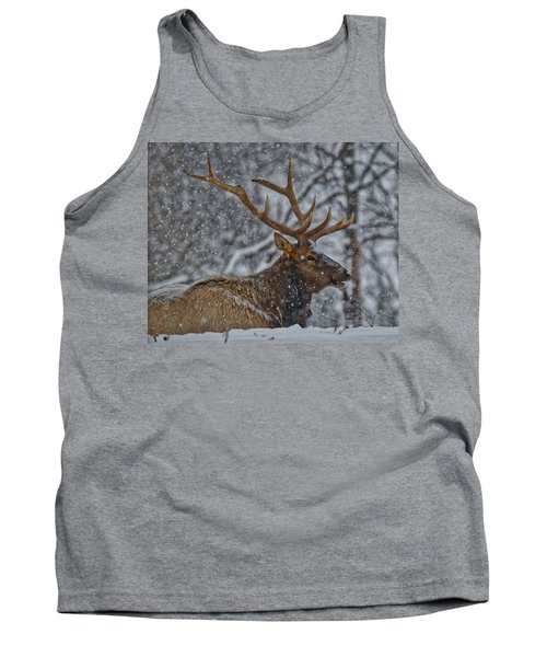 Elk Enjoying The Snow Tank Top by Michael Peychich
