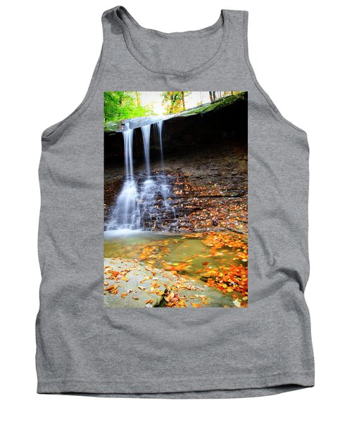 Fall At Blue Hen Falls Tank Top