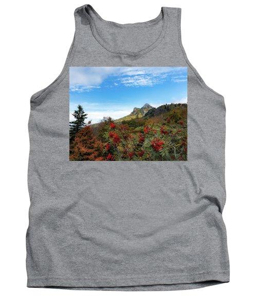 Fall At Grandfather Mountain Tank Top